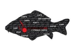 Nálepka KAPOR séria Words - 1ks