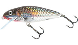 perch holo grey shiner