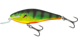 Salmo executor Real Hot perch