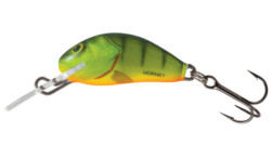 Salmo Hornet Hot perch