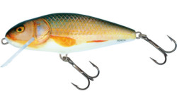 Salmo Perch Real Roach